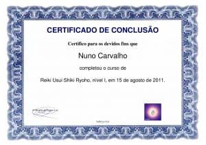 Nuno Cortez Reiki Nivel 1